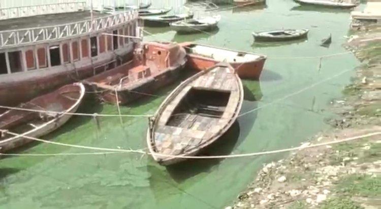 जांच रिपोर्ट: जाने क्यों हो रहा था गंगा का पानी हरा, DM ने शासन को भेजी रिपोर्ट, विभागों को दिया निर्देश...