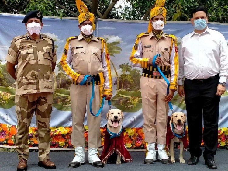 सुरक्षा की जिम्मेदारी: वाराणसी एयरपोर्ट सुरक्षा में तैनात हुए रांची से प्रशिक्षण प्राप्त यह दोनों स्वान, रिटार्यड हुई श्वान जानी के साथ प्रियंका गांधी की तस्वीर हुई थी वायरल...